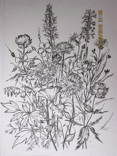 doodle meaning flowers 142 best ink images on