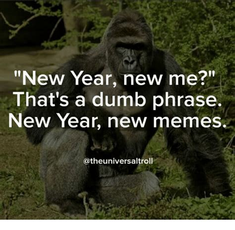 new year new me meme new year new me that s a dumb phrase new year new memes