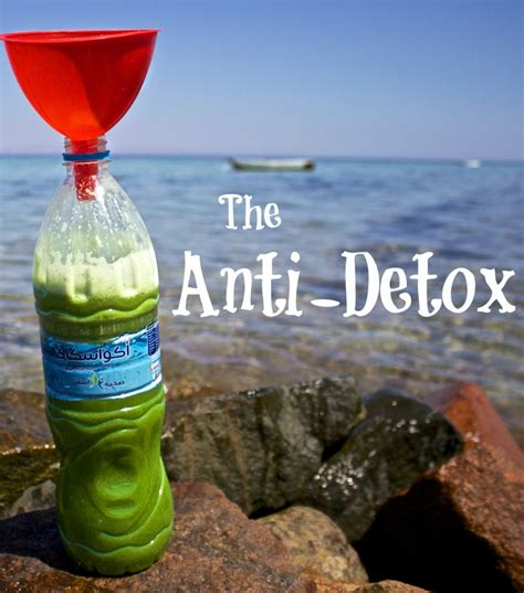 Anti Detox by The Histamine Intolerance Anti Detox Book Is Here