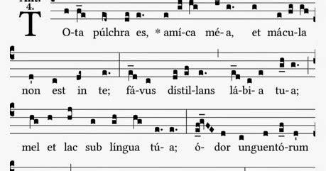 tota pulchra testo tota pulchra es amica mea antifona gregoriana per l