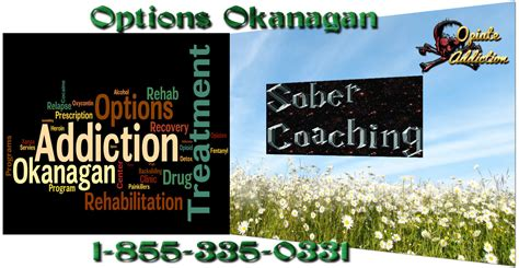 Detox Than Sober Living Than Treatment Center Than Iop by What Does A Sober Coach Do Vancouver Sober Coaching For