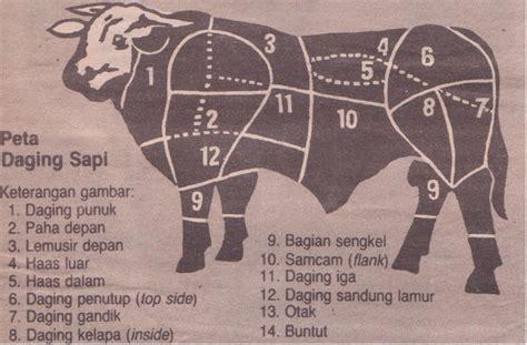 tips memilih bagian daging sapi  masakan resep