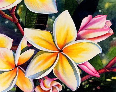 hawaiian flower painting 17 best images about frangipani on starfish