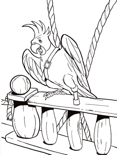 parrot pictures cartoon coloring home