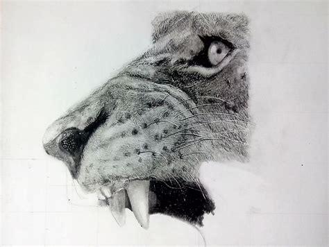 dibujos realistas lápiz dibujos para dibujar realistas dibujos para dibujar