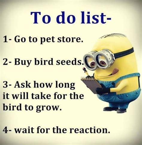 funny quotes top  funny memes collection quotes daily leading quotes magazine