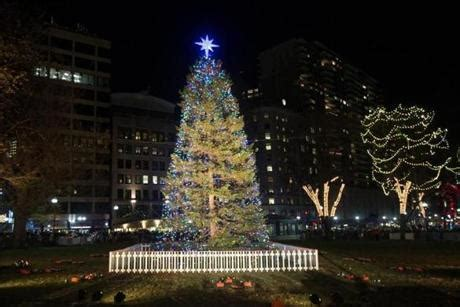boston mass xmas tree lightging 20 things to do with during the holidays the boston globe