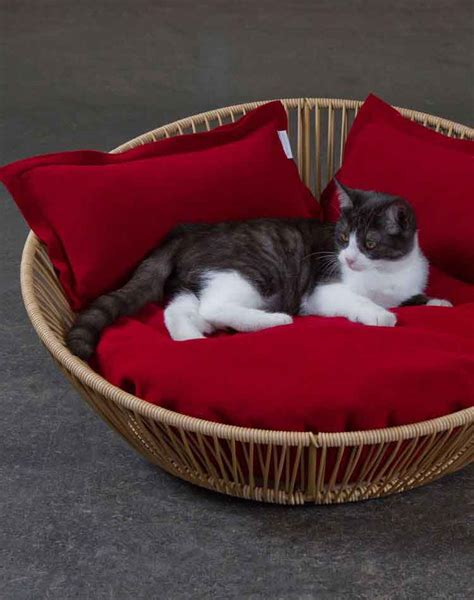 cat beds modern cat bed siro saleen a comfortable orthopaedic cat bed