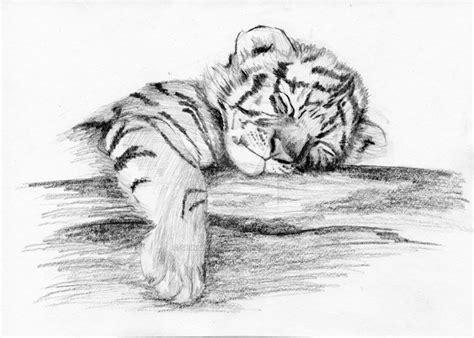 tiger cub by shinimegami86 on deviantart