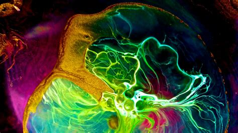 beautiful art pictures why didn t school science look this beautiful gizmodo