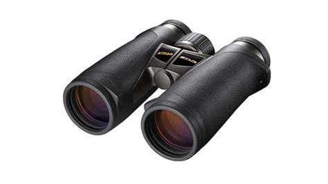 a guide to birding with binoculars b h explora