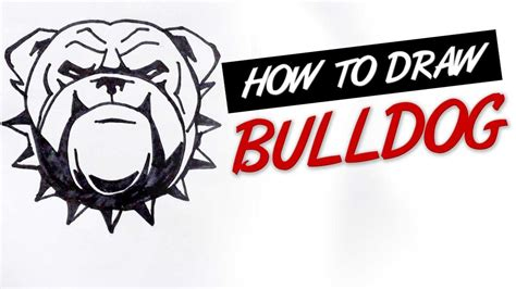 how to draw bulldog tribal tattoo design ep 146 youtube