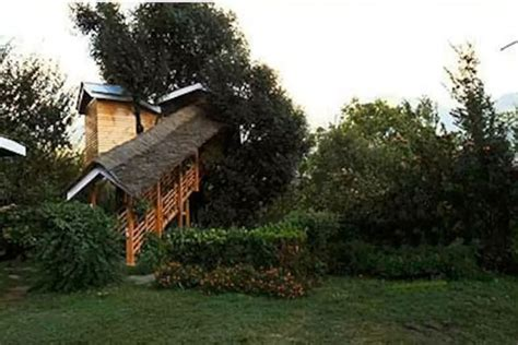 Tree Cottage Manali by Experience The Height Of Luxury With These Tree House