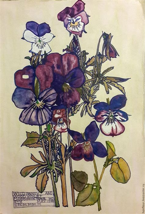 charles rennie mackintosh l watercolor herbarium charles rennie mackintosh a copy of