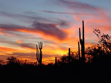 stained glass solar lights arizona the second worst place to live the oracle of