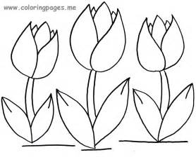 tulip coloring pages tulips flowers coloring pages and tulips crafts