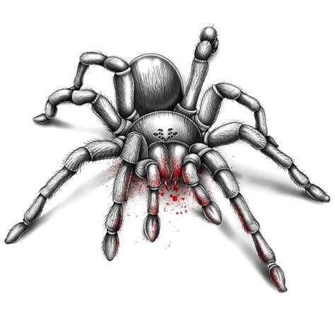 bloody tarantula tattoo design
