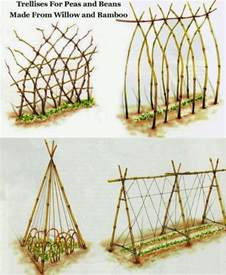 how to make a bean pole trellis diy trellis ideas for beans peas and how they re