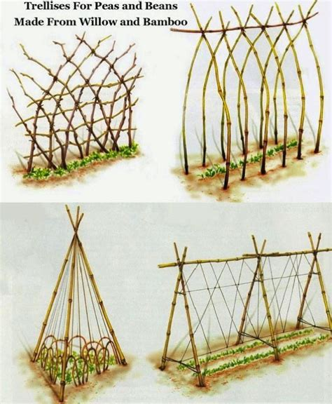 Trellis Netting For Sale Diy Trellis Ideas For Beans Peas And How They Re