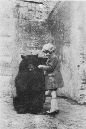 Winnie The Pooh History