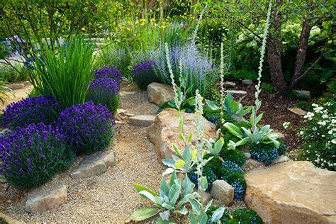 Gartengestaltung Pflanzen by Xeriscaping Drought Proof Landscape Design Sacramento