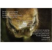 Pet Loss Poems MEMES