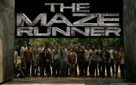 download film the maze runner high compress the maze runner wallpaper 1280x800