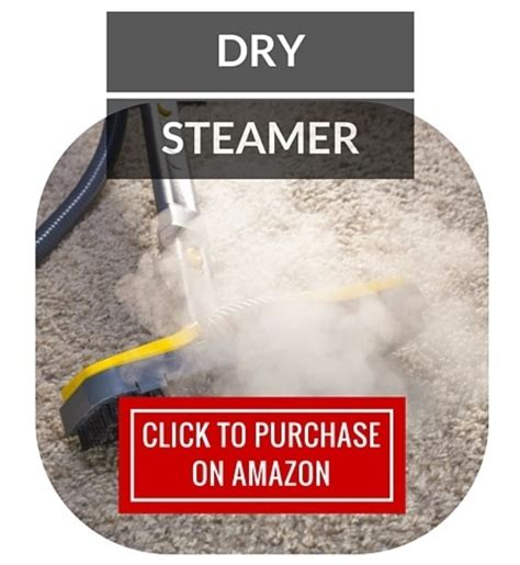 dry steamer for bed bugs how to get rid of bed bugs
