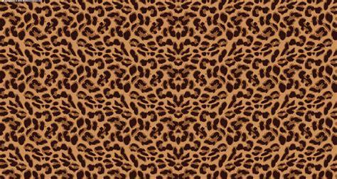 background print leopard background wallpapersafari
