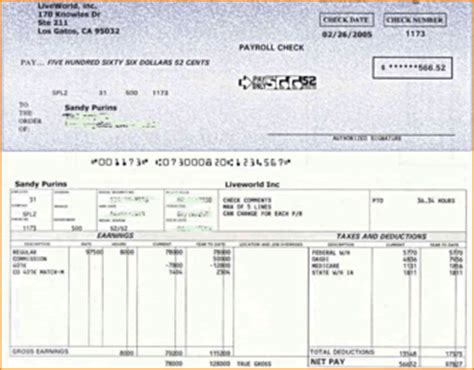 free check stubs template software 5 real check stubs timeline template
