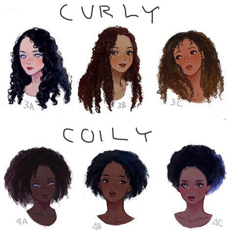 hair and head types eafuransu i drew a visual hair type classification