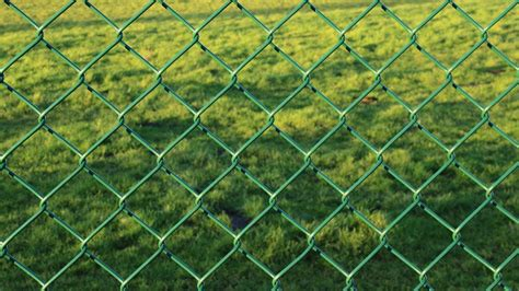 free photo fence wire mesh fence green free image on