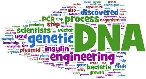 Genetic Engineering sgugenetics genetic engineering
