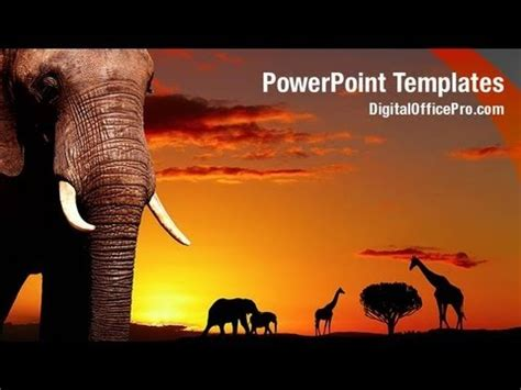 African Wild Animals Powerpoint Template Backgrounds Digitalofficepro 00044w Youtube Animal Powerpoint Templates
