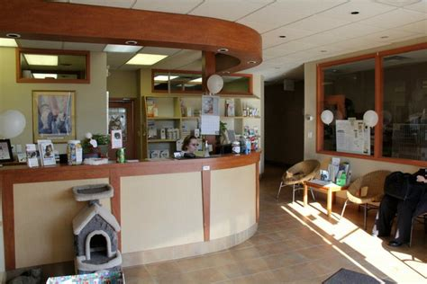 and cat hospital cat hospital in scarborough on guildcrest cat hospital