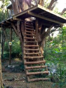 Build your own tree house quotes