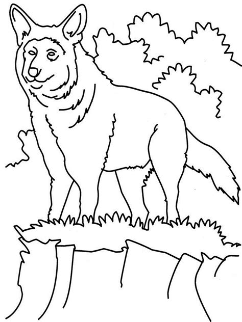 angry wolf coloring page free angry wolf coloring pages