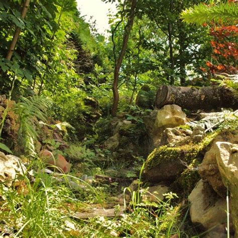 Wilder Garten Ideen by Wilder Garten Kochergarten E V