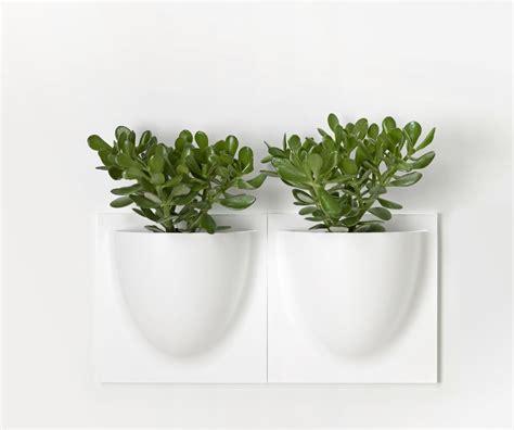 Pot Design Pour Plante Interieur by Pot Mural Pour Plante Interieur Sedgu