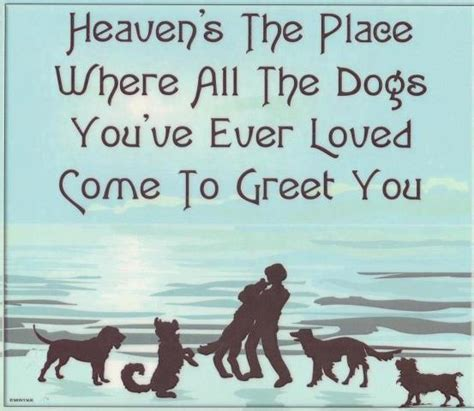 do all dogs go to heaven grieving the loss of your pet books pet loss grief www remembermegiftboutique