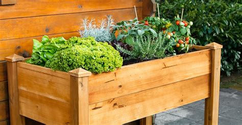 Gartenbedarf Kaufen by Gartenbedarf Kaufen Ihr Gartenshop Mein Sch 246 Ner Garten