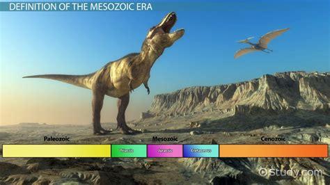 mesozoic era the mesozoic era plants animals video lesson