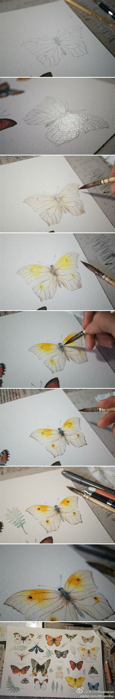 25 best ideas about butterfly watercolor on pinterest