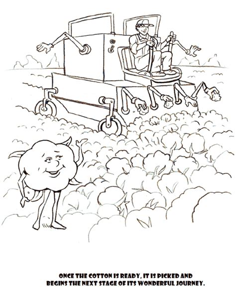 Free Coloring Pages Of Cotton Plants Cotton Coloring Pages