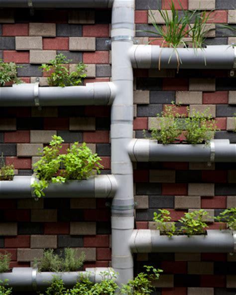 indoor vertical herb garden grow your own salads and herbs