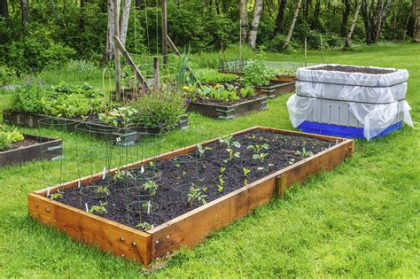 How To Set Up A Vegetable Garden Bed How To Create Your Own Fruit And Vegetable Garden