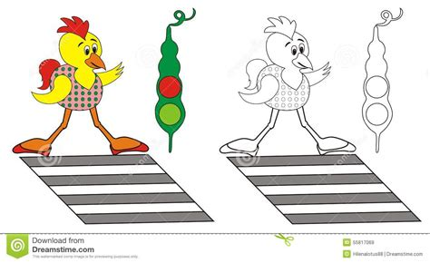coloring pages of zebra crossing chick stock vector image 55817069