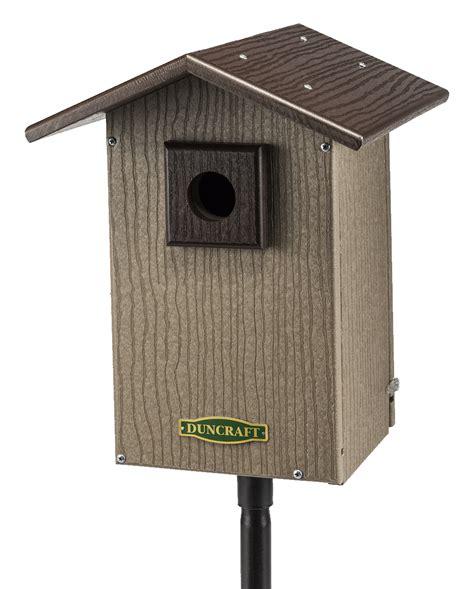 duncraft com bird safe premium bluebird house pole