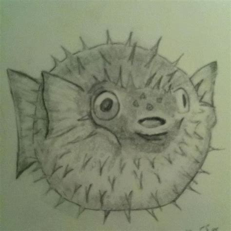 puffer fish tattoo puffer fish pencil drawings and paint