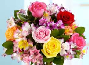 the best flowers best graduation flower types proflowers blog